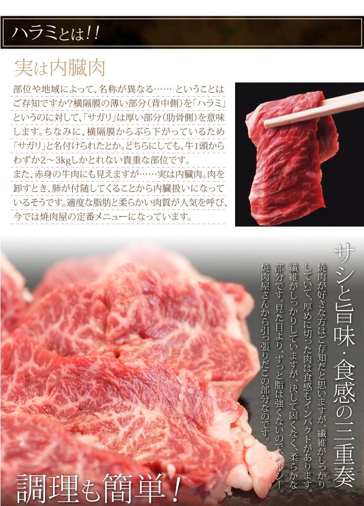 たれ漬け国産牛ハラミ(サガリ)300g
