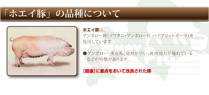 豚切り落とし500g